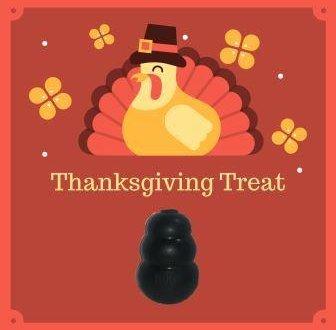turkey graphic kong